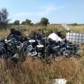 Rifiuti speciali abbandonati in campagna, i Rangers Puglia: «Situazione pericolosa»