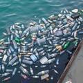 """""""Se butti male... finisce in mare """", al via il progetto di Legambiente nelle scuole della Puglia"""