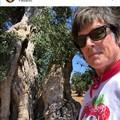 "Ronn Moss a Fasano, il Ridge di  ""Beautiful "" gira un film in Puglia"