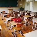 """Esami di Stato, classi  """"pollaio """" e graduatorie docenti, cosa succederà a scuola?"""