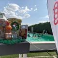 "Fondazione Tatò Paride per l'Italia, nasce uno speciale  ""Summer camp "" solidale"