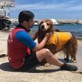 Bari dice addio a Texas, cane-bagnino di Pane e Pomodoro