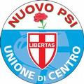 Regionali in Puglia, i risultati dell'UDC