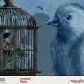 """Cartoline per raccontare l'emergenza Covid-19, l'iniziativa di  """"La Puglia Racconta """""""