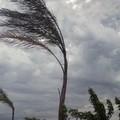 Torna il maltempo sulla Puglia, da stanotte allerta meteo per vento
