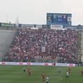 Il Bari lotta ma cede al Parma. La decide Gagliolo: 1-0