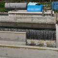 Acquedotto Pugliese, 24 milioni di euro per potenziare il depuratore Bari est