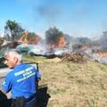 Bari, tre incendi fra Palese e Lama Balice. Scatta il piano-sicurezza delle Guardie ambientali