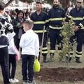 """Bari, i piccoli della Perone piantano una quercia per  """"tutelare la terra """""""