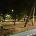 Bari, si completa la nuova illuminazione della pineta di San Francesco, stasera l'inaugurazione con Decaro