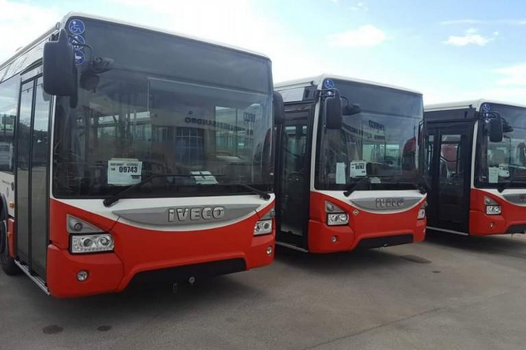 I nuovi autobus Amtab