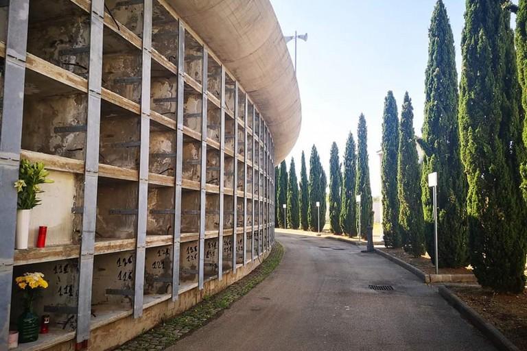 Il cimitero di Palese