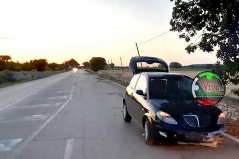 L'incidente. <span>Foto Vivi la strada</span>