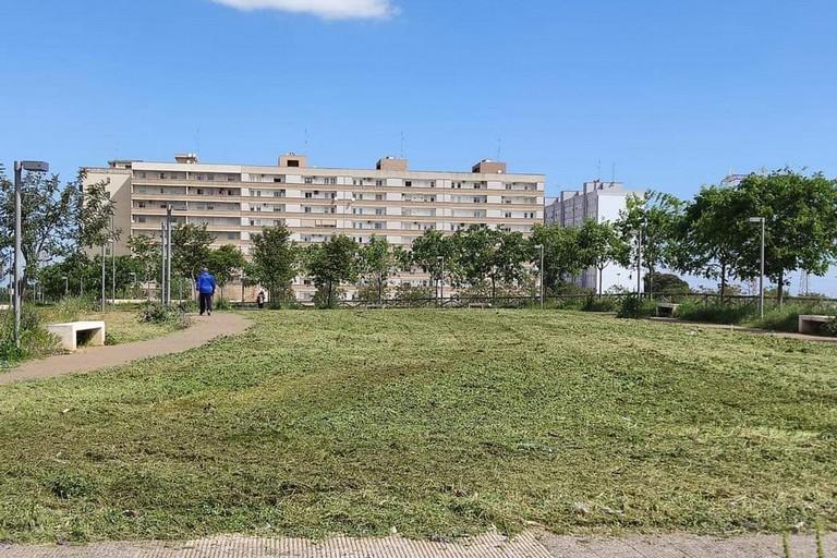 L'area dove sorgerà il parco a Loseto