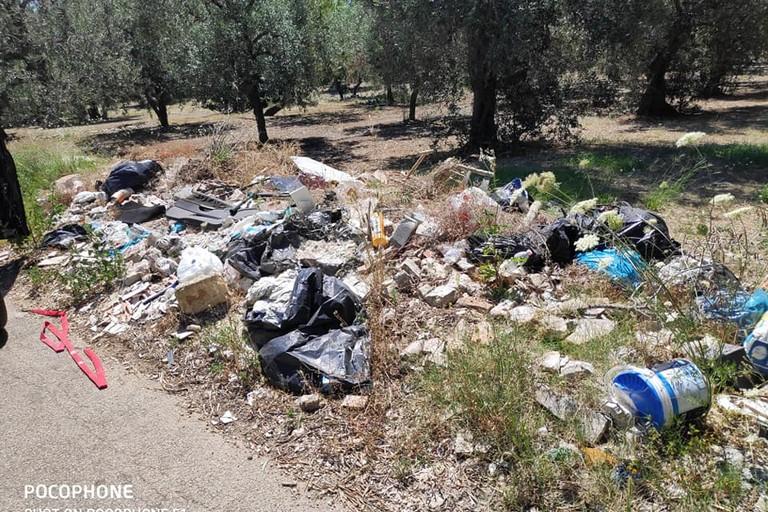 I rifiuti abbandondati a Palese