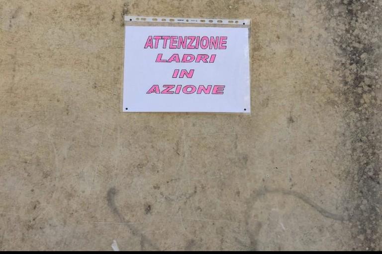 Il cartello