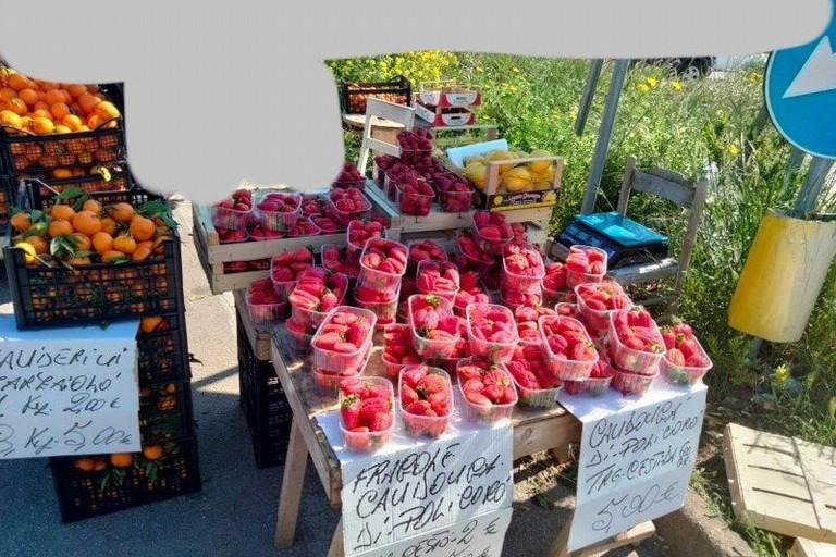 La frutta in vendita