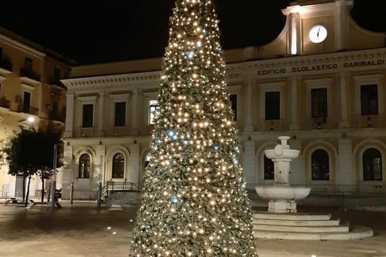 Lalbero di Natale in piazza Risorgimento