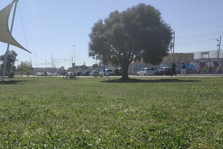 Parco Punta Perotti