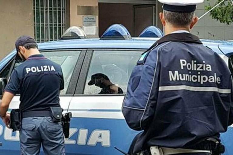 polizia locale polizia di stato