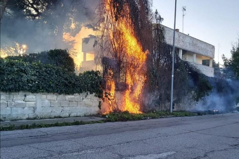 Albero in fiamme via Torrebella