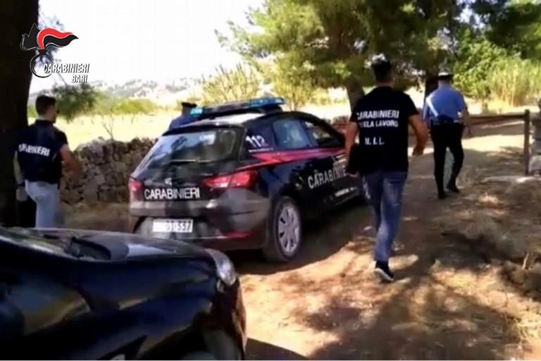 task force lavoro carabinieri
