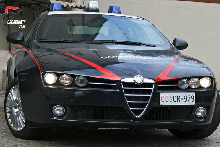Un agazzella dei carabinieri