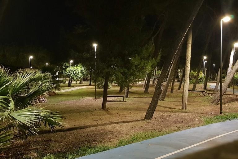 la nuova illuminazione della pineta San Francesco