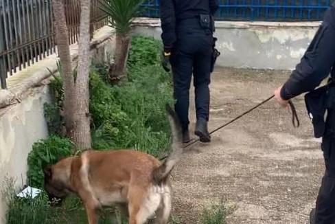 i carabinieri in via la Pira